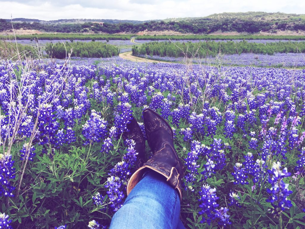 Best_place_to_see_bluebonnets_austin_hill_country